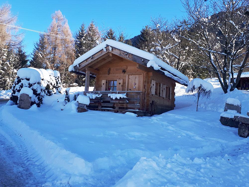 alpe di siusi winter holiday skiing cross country skiing and